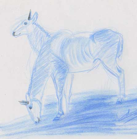 1 croquis animal antilope bleu-zoo