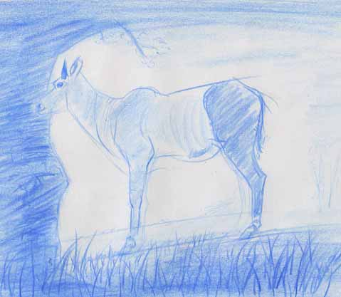 Nilgaut antilope dessin animal