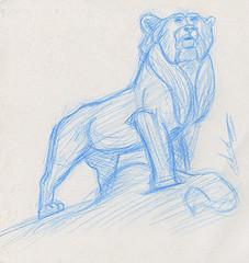 Croquis étude animalière de profil de lion