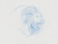dessin animalier de lion dessiné au crayon
