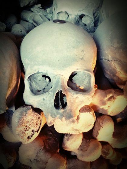 Tête de mort d'adulte anciene