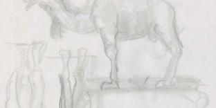dessins dromadaire de profil et gaurs de dos