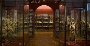 Musée Fragonard de l'école vétérinaire de Maisons-Alfort