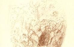 Dessin de la grotte du parc de Bagatelle
