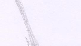 1 dessin de patte d'oiseau dessinée au crayon sec