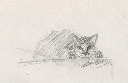 Chat attaque - croquis animal domestique
