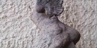pied-hermes