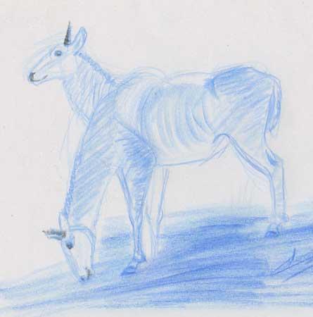 1 croquis animal antilope bleu-zoo