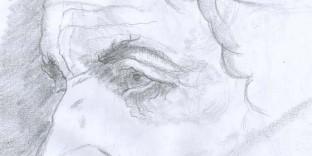Etude visage dessinJean-Baptiste-Greuse
